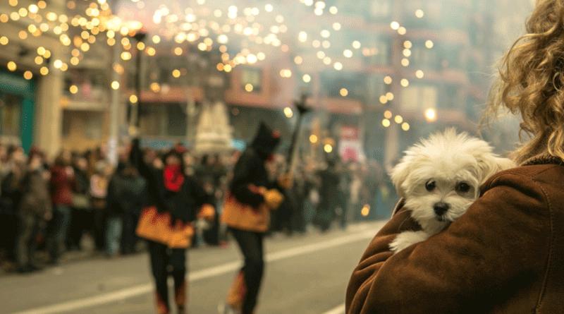 puppy_fireworks